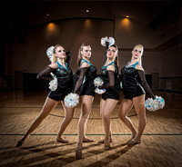 2014 Steton Dance Team Seniors