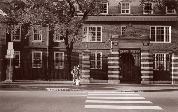 Entering-The-Gates-of-Harvard
